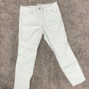Loft Size 14 Crop Pants